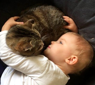 猫に話しかける女の子