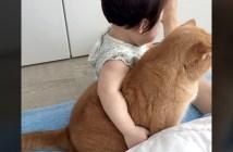 肩を組む猫と女の子