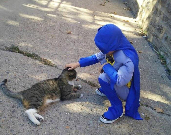 猫を撫でるヒーロー