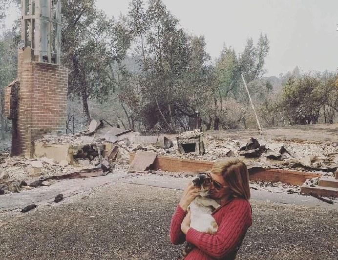 無くなった家と猫