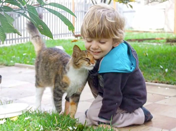 スリスリする男の子と猫