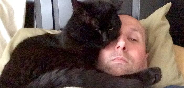 男性に抱きつく猫