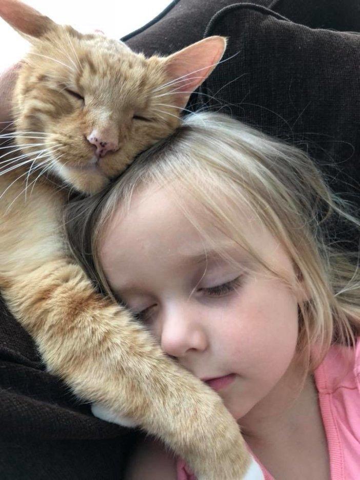 一緒に眠る女の子と猫