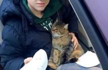 猫を助けた14歳の少年
