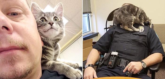 優しい警察官に助け出された子猫。自ら警察官の相棒になって、チームを支える存在に (*´ェ`*)