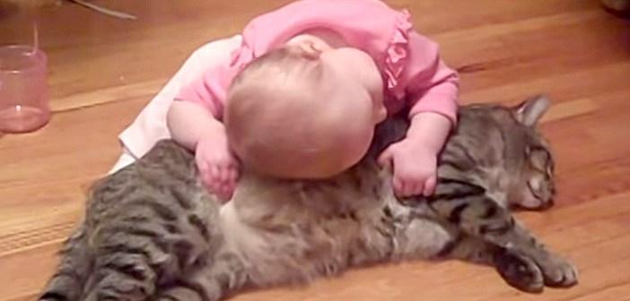 「モフモフだ〜い好き!」赤ちゃんに激しく懐かれる猫さん。その反応がとっても優しかった (*´ω`*)♡