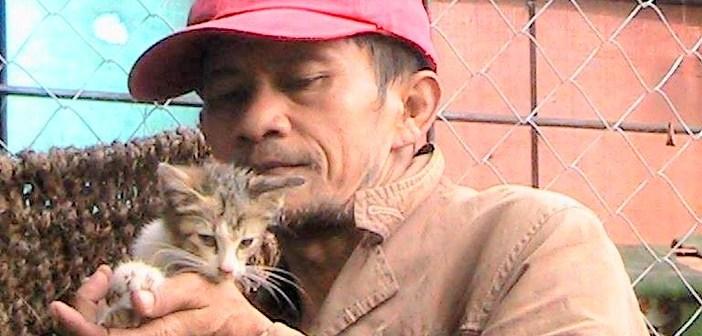 猫達を救い続ける男性