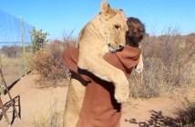 男性とライオン