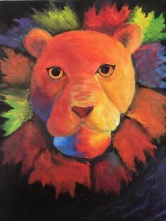 Lion 13yo