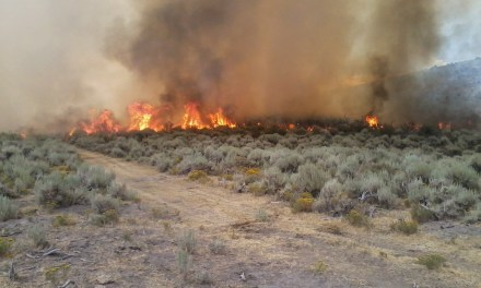 570 acre blazed contained near Eureka