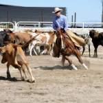 Annual county fair set for next week