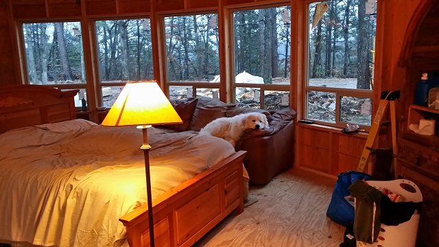 Bear was right at home, glamping.