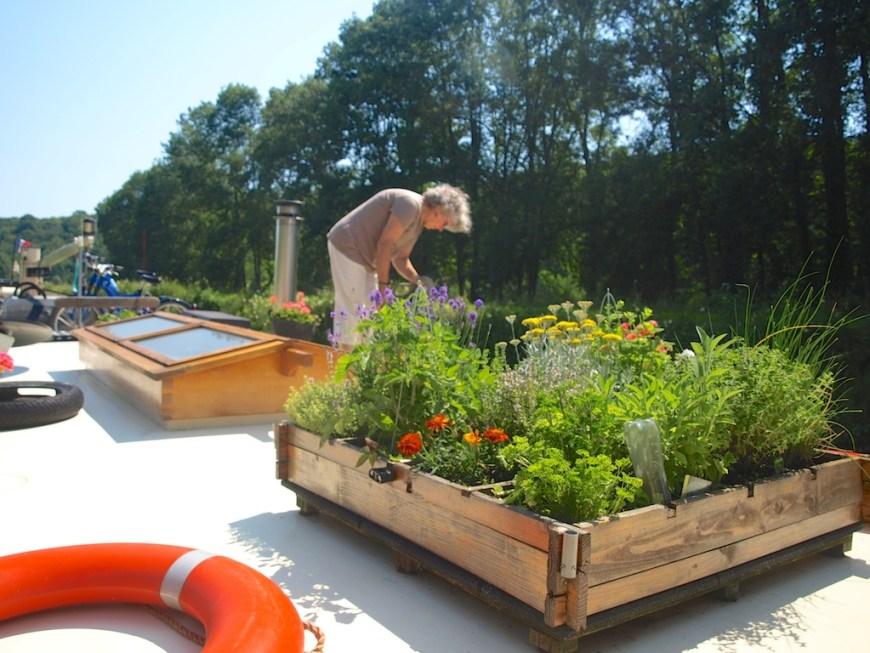 Tending the garden on 't Majeur