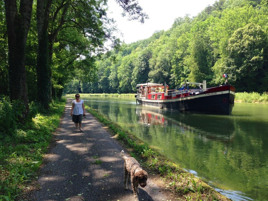 Lisette and Panache lead 't Majeur along the Canal entre Champagne et Bourgogne