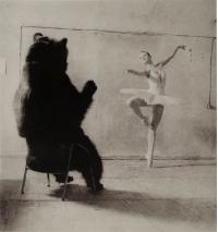 В Берлин привезли медведей из Москвы
