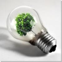 Экономить энергию в законодательном порядке