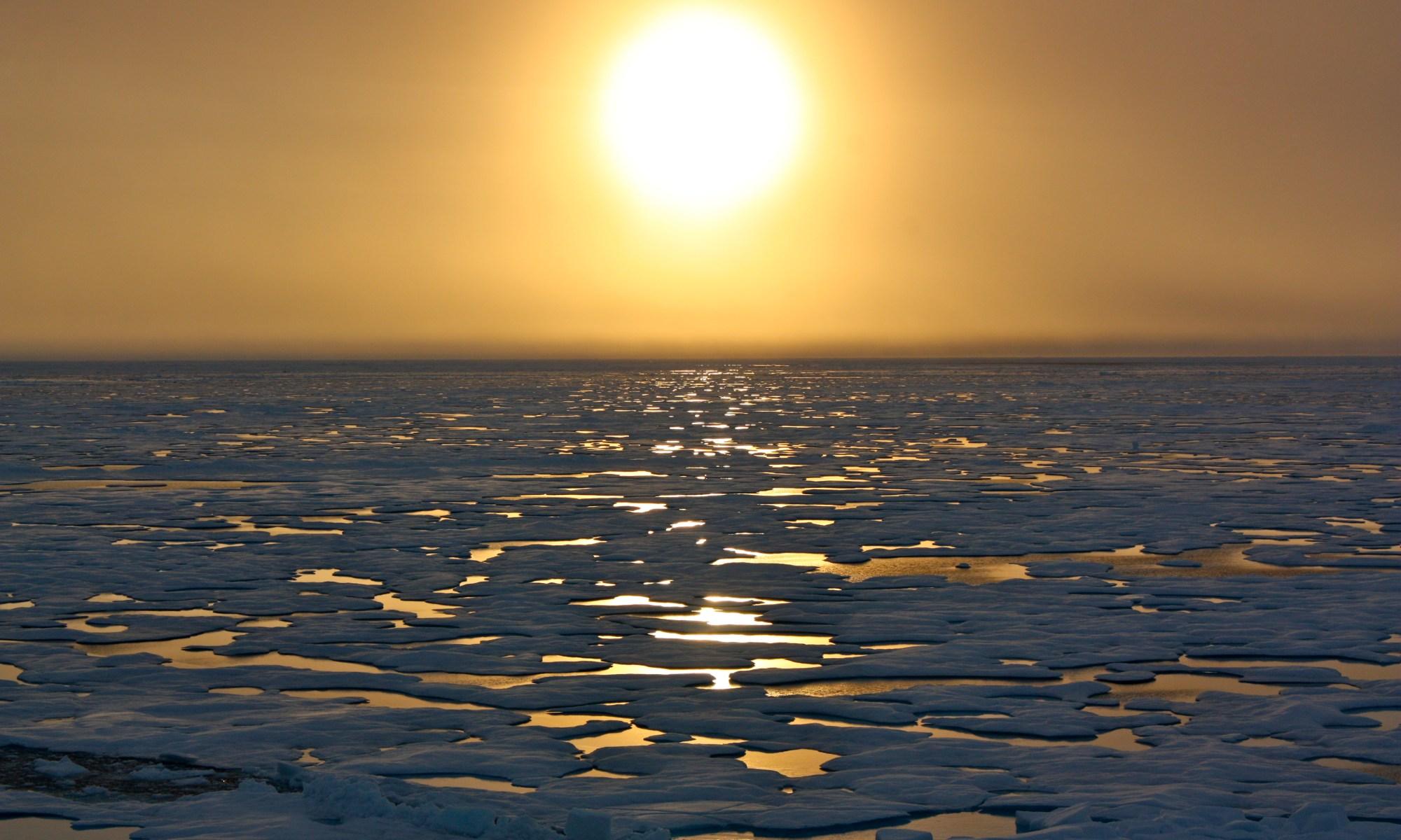 Арктические льды могут растаять уже в этом году