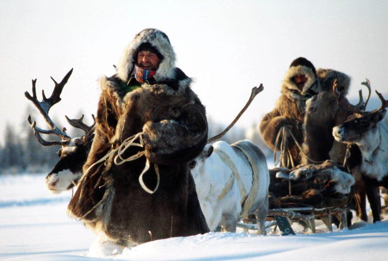 Яцек Палкевич: «Моя душа – в Сибири»