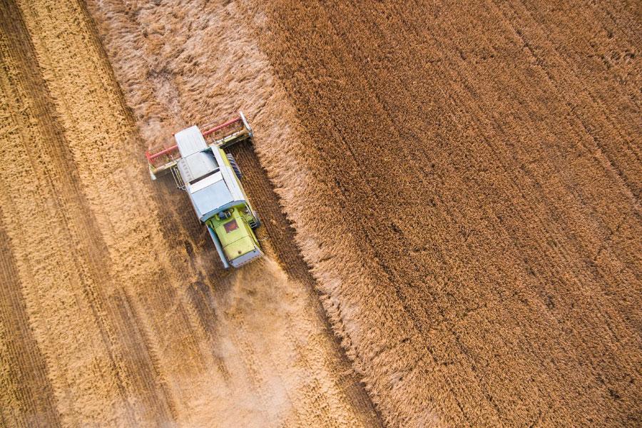 Названы лучшие в Европе проекты по использованию спутников для сельского хозяйства