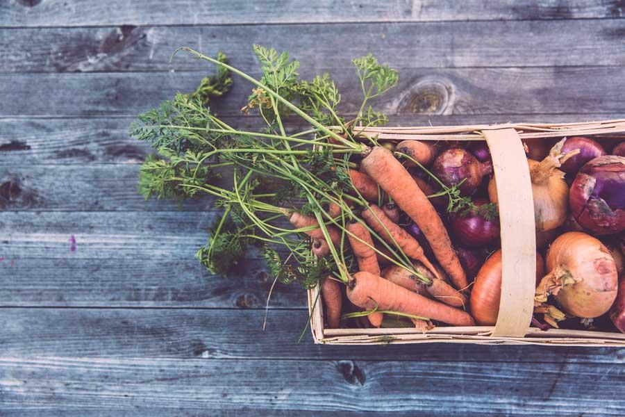 Самой большой популярностью органические продукты питания пользуются на севере Европы