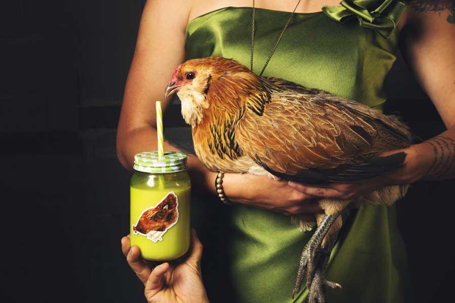 В аэропорту Праги яйца будут подавать только от «свободных» кур