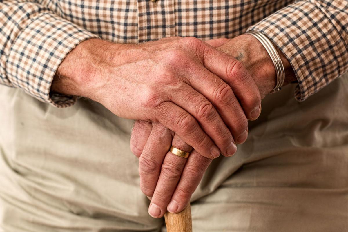 Европейский проект пригласил одиноких больных пенсионеров в Польше пожить на фермах