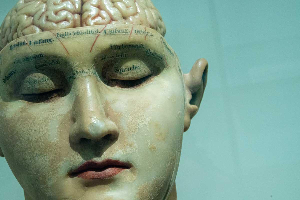 Если мозг регулярно лишать сна, он начинает «пожирать» сам себя, выяснили итальянские ученые