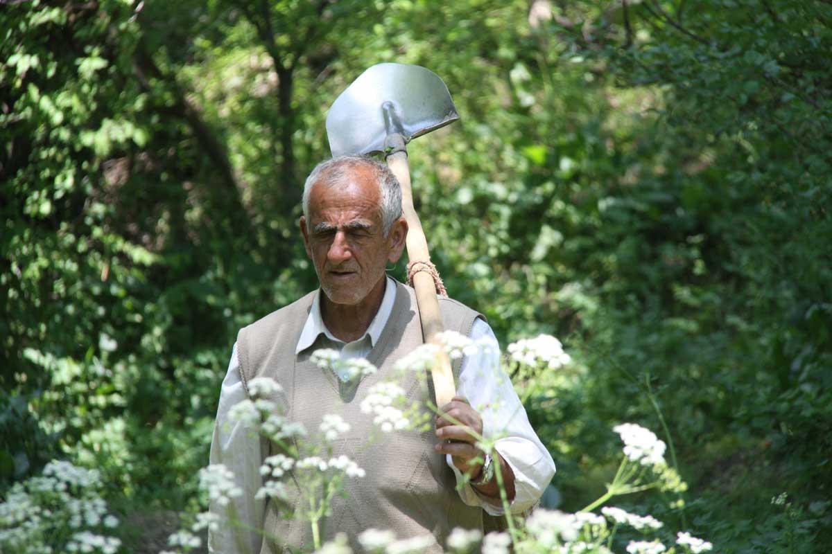 На Пальма-де-Майорке пенсионеры и социально незащищенные жители займутся городским земледелием