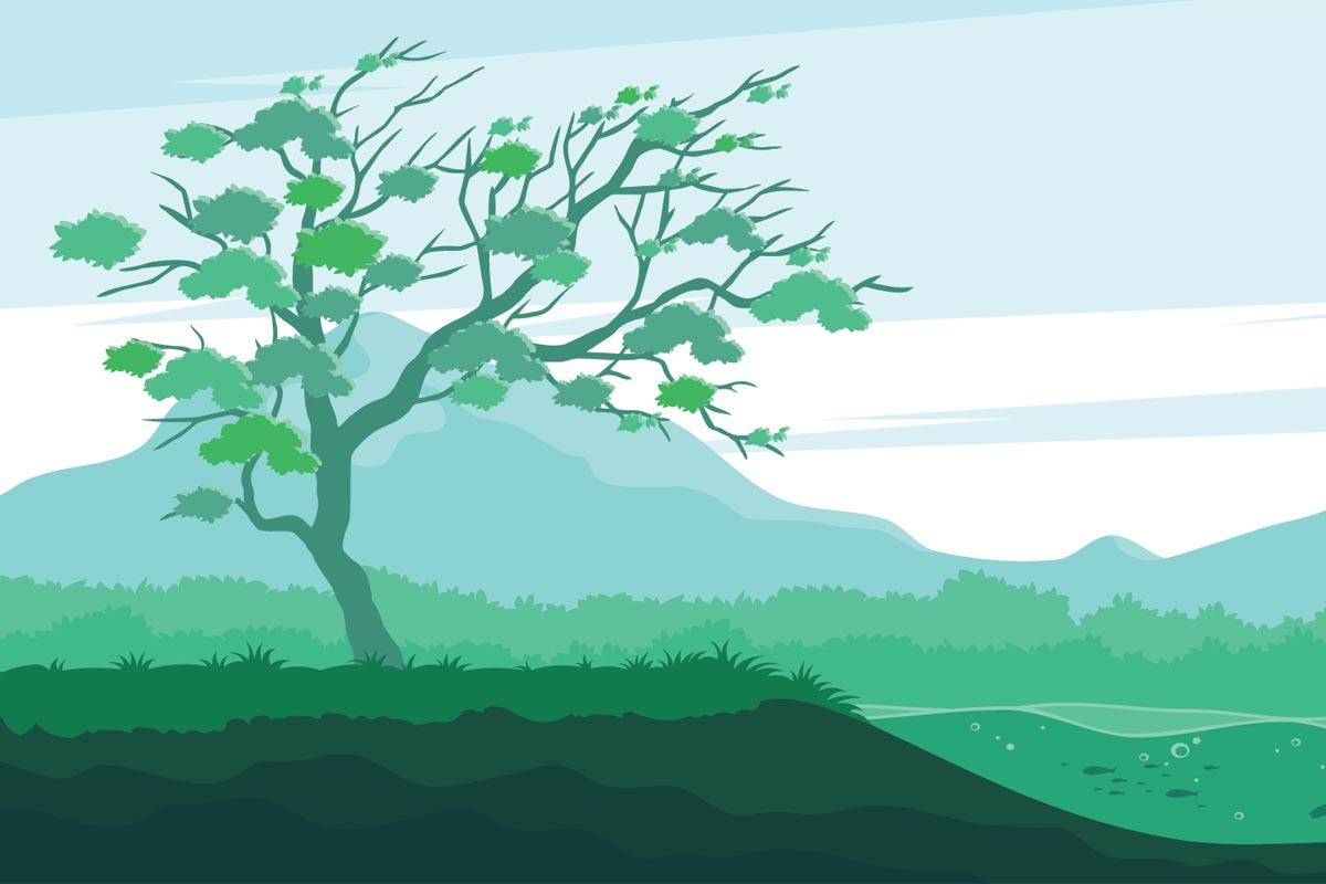 Древний платан из Дагестана представит Россию на конкурсе «Европейское дерево 2021 года»