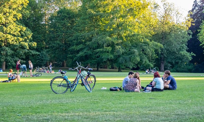 holandeses no parque em dia de sol