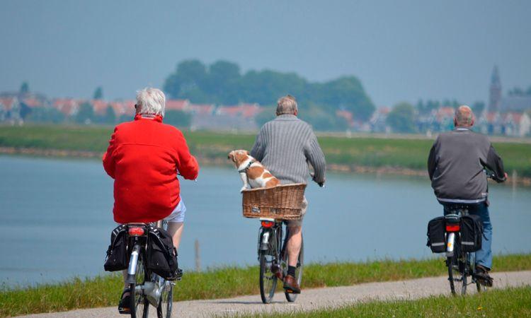 Locomoção no Holanda