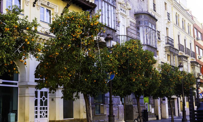 sevilha, uma das melhores cidades da espanha para morar