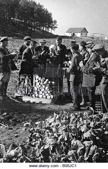 collective-farmers-weigh-record-breaking-beet-harvest-that-was-picked-b95jc1.jpg