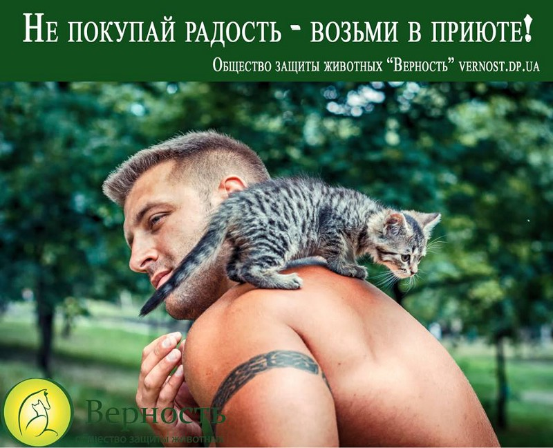 """""""Don't buy joy, take it from a shelter!"""""""