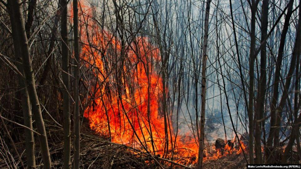 The fire quickly takes dryness near the railroad track. Near the border crossing & laquo; Speeches & raquo;