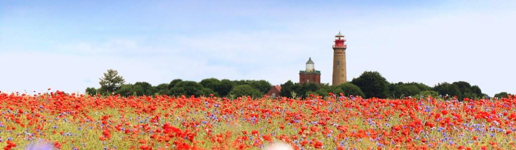 Insel Rügen, Leuchtturm und Mohnfeld
