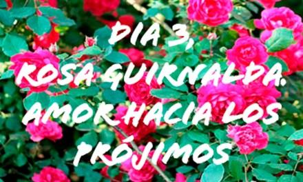 DÍA 3. ROSA GUIRNALDA. AMOR HACIA LOS PRÓJIMOS