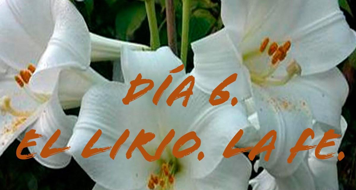DÍA 6. EL LIRIO. LA FE.