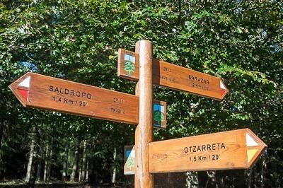 Hayedo de Otzarreta es un lugar muy visitado