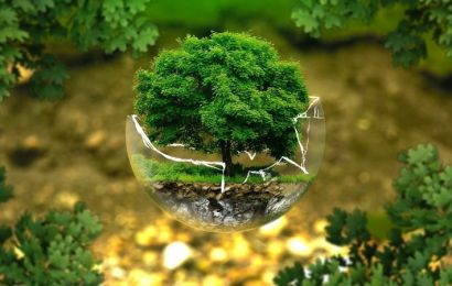La influencia de los regalos publicitarios ecológicos en los consumidores