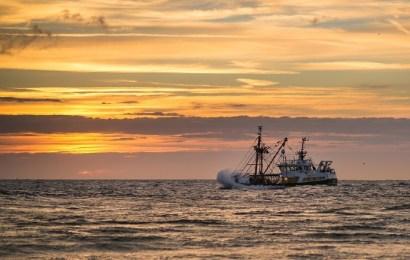 Luis Planas: España apuesta por compaginar sostenibilidad y rentabilidad para mantener la gran biodiversidad marina