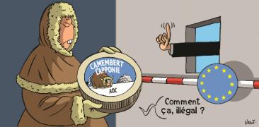 camembert_laponie_1