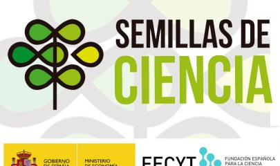 Logo Semillas con Ministerio (1)