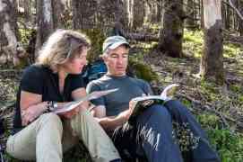 Kalkalpen Wilderness 76