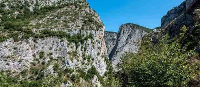 The uniqueness of Küre Wilderness
