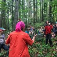Webinar 9th July 15:00 CET Tourism in Wilderness