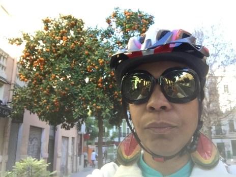 #Valencia #Spain #CamperLife #Adventures #Paella #RoadTrip #Biking #Graffiti #FoodMarket