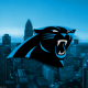 Potential Carolina Panthers sale puts NFL's gambling problem in spotlight