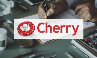 Cherry year-end report 2018
