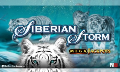 Siberian Storm blows in a £1.3 million windfall for one lucky NetBet player!